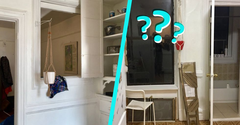 Only a Real Eagle-Eye Can Spot the Cat Hidden in These Photos