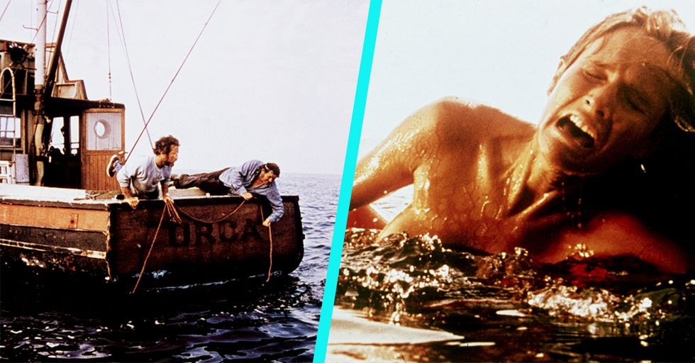 20 Behind-The-Scenes Facts About the Shark From 'Jaws' That Are Way More Hilarious and Weird Than Scary