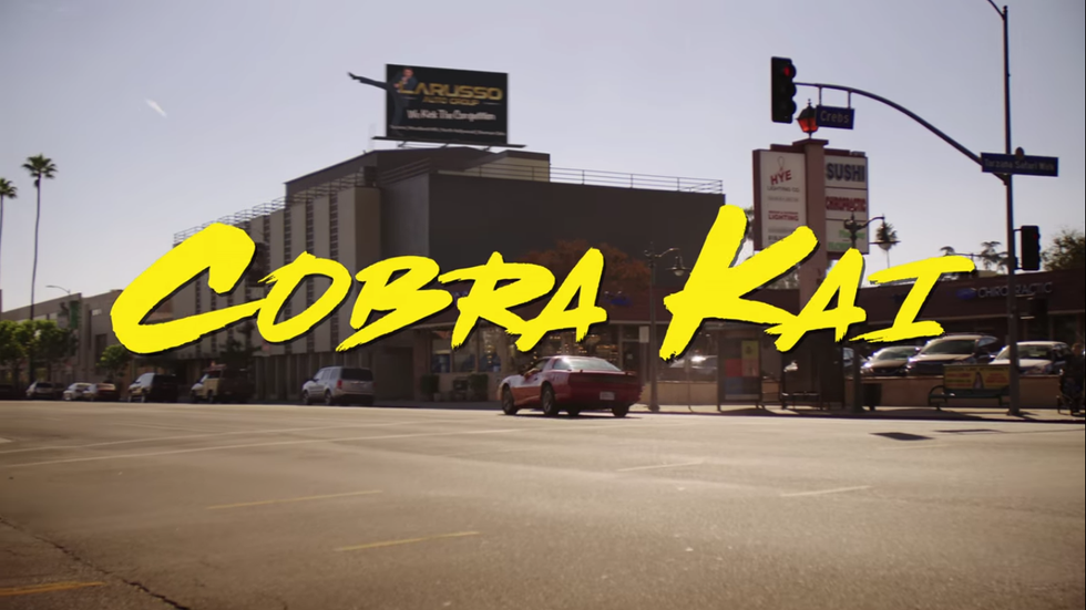 5 Things You Need To Know Before Watching The Hit Show 'Cobra Kai' On Netflix