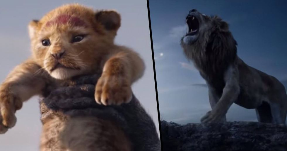 Everyone Is Saying The Same Thing About The New Lion King Trailer