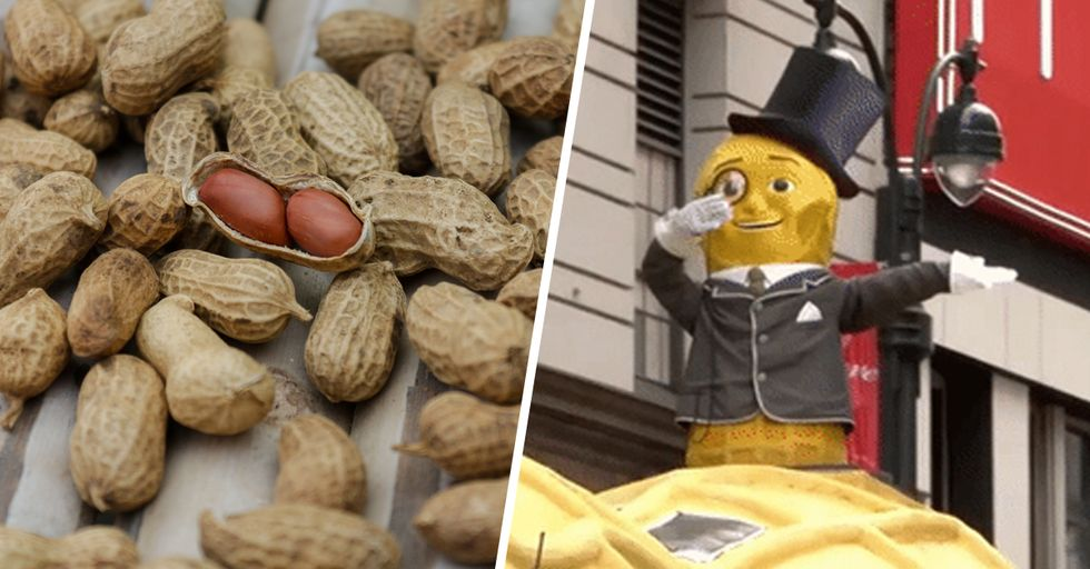 Peanut Allergies Are About to Be a Thing of the Past, Say Scientists