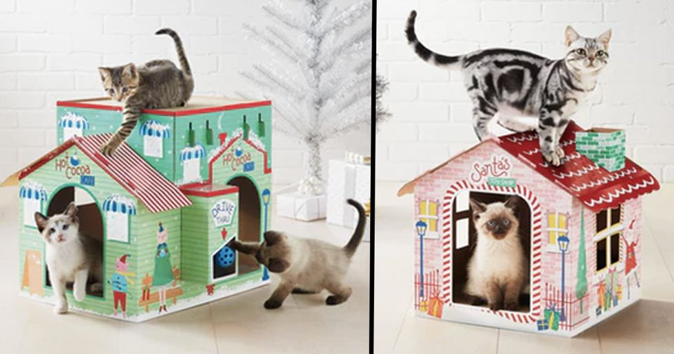 Target Is Selling Holiday Cat Scratchers