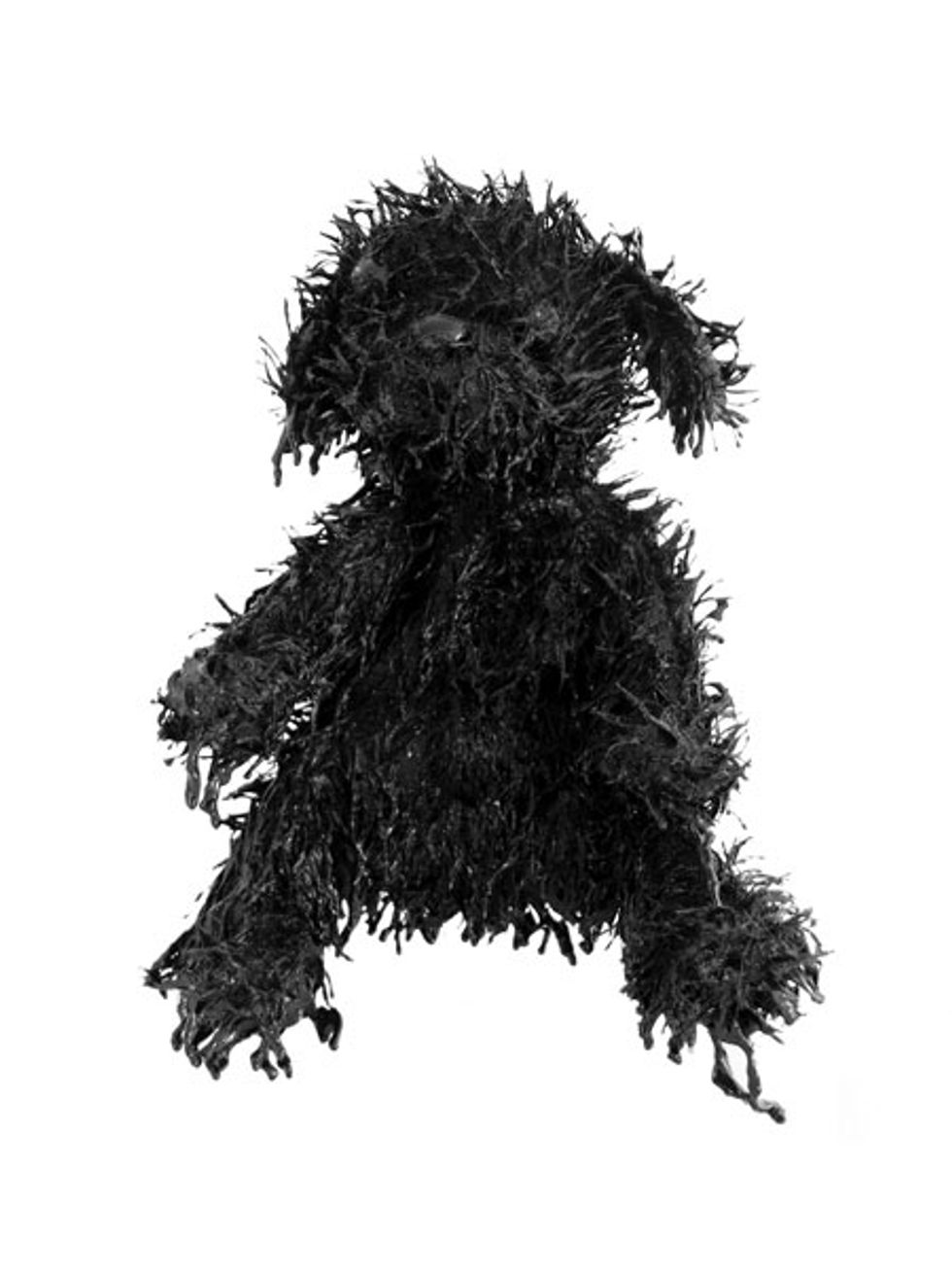 Peter Davis' Status Update: Matt Campbell's Black Bears