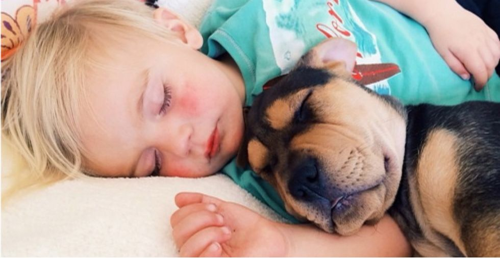 Puppy and his boy still nap together every day, still the cutest thing on the internet [15 new pics]
