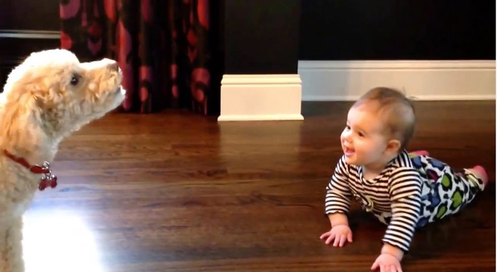 A Baby and Her Loyal Dog Have the Squeakiest Conversation Ever