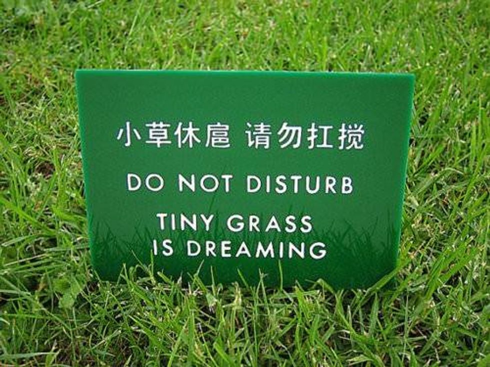 32 Hilariously Translated Signs That Prove English Is Hard