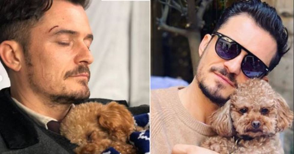 Orlando Bloom Says He's Broken as He Gives Update on Missing Dog