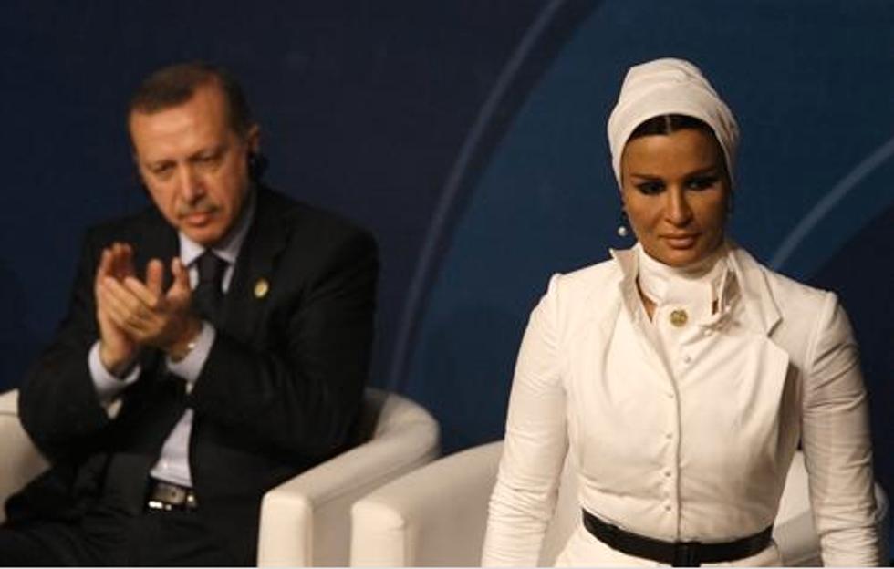 Sheikha Mozah bint Nasser Al Missned of Qatar: I Like What I See!