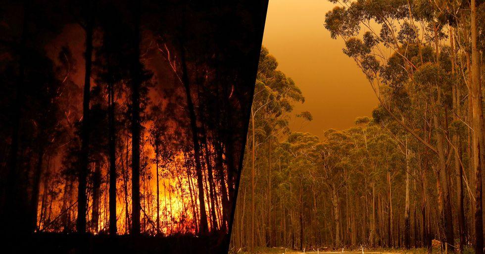 Farmer Spots Devil's Face Emerging From Devastating Bushfire Clouds in Australia