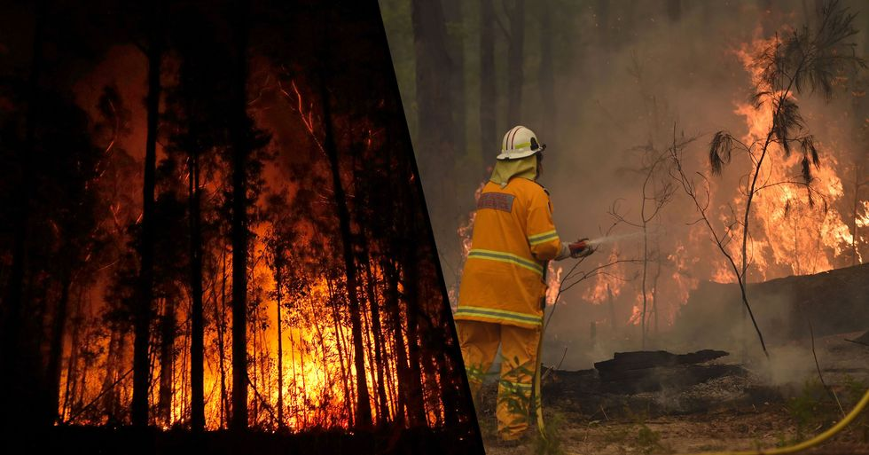 Guy Posts Harrowing Twitter Thread That Details the Devastating Power of the Australian Fires