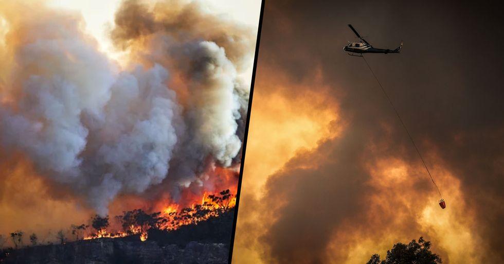 Bushfire Relief Donations Pass the $100 Million Mark