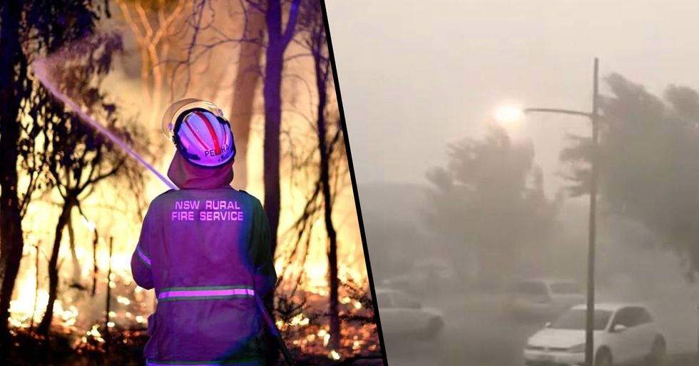 Rain Finally Pours in Australia Putting out Deadly Bushfires