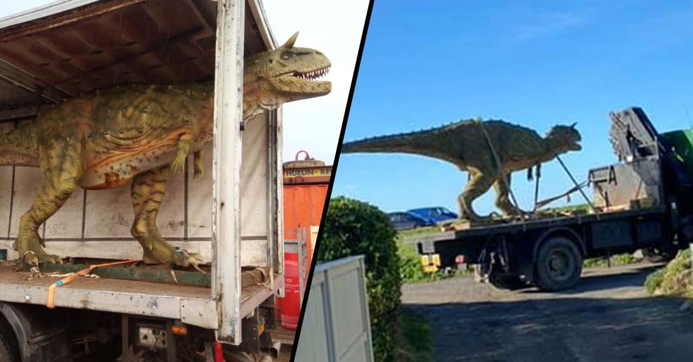 Dad Accidentally Ordered Six-Meter-Long Dinosaur for Son
