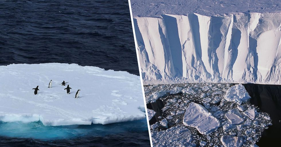 Antarctic Temperature Rises Above 65 Degrees Fahrenheit for First Time Ever