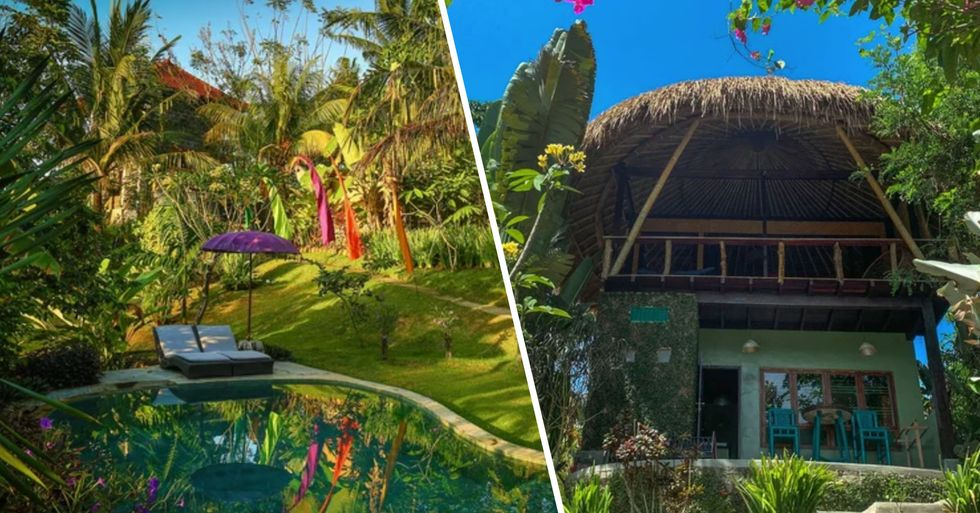 You Can Now Stay in a Tree House in Bali for $44 a Night