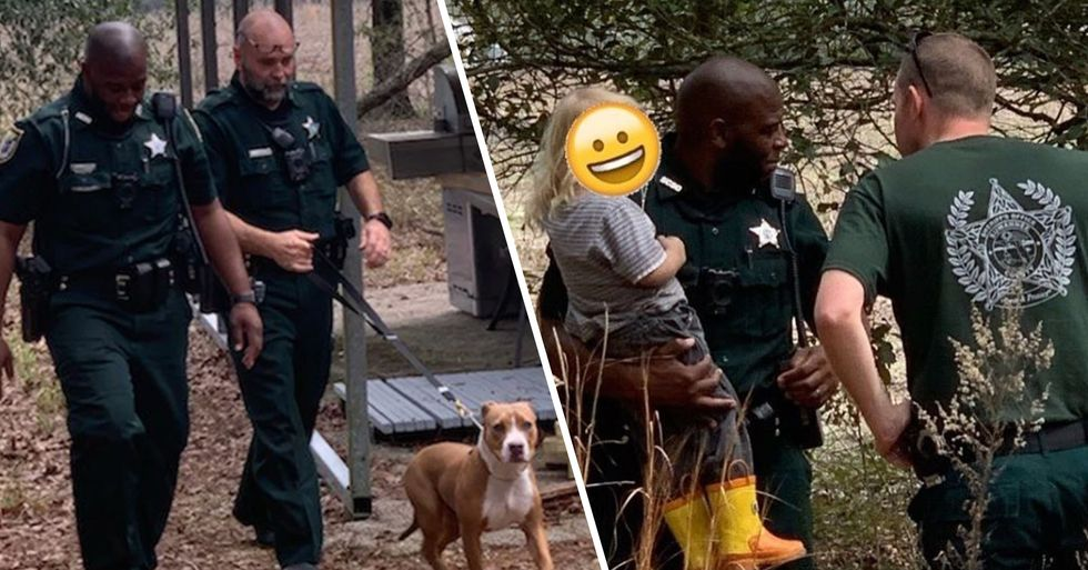 Hero Pit Bull Protects Lost Three-Year-Old Until He's Found by Police