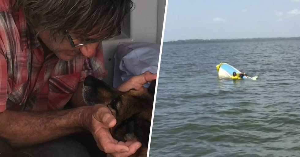 Dog Swims for 11 Hours to Raise Alarm After Owner's Boat Capsizes