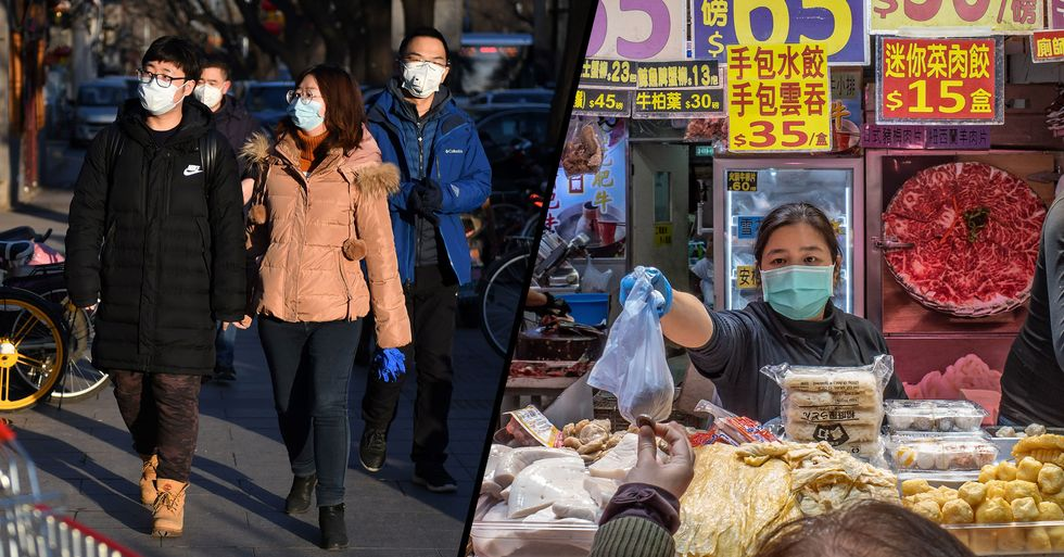 Chinese City to Ban Residents From Eating Dogs Amid Coronavirus Epidemic