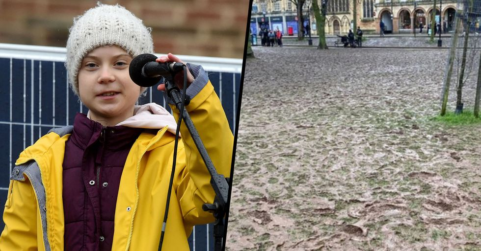 Greta Thunberg's Climate Rally Destroys Healthy Green Patch of Land