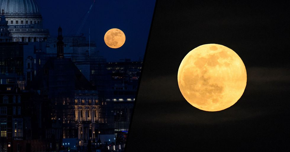 A 'Spectacularly Bright' Supermoon Will Light up the Skies Tonight