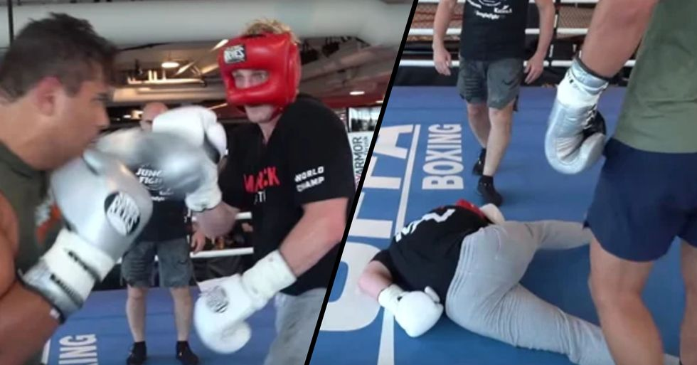 Logan Paul Brutally Knocked out Cold by Undefeated UFC Fighter