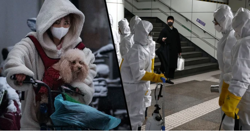 Coronavirus Outbreak Declared Global Pandemic by WHO