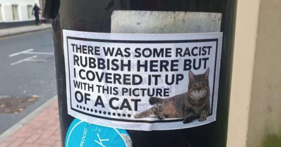 Someone Is Covering Racist Graffiti With Cat Stickers