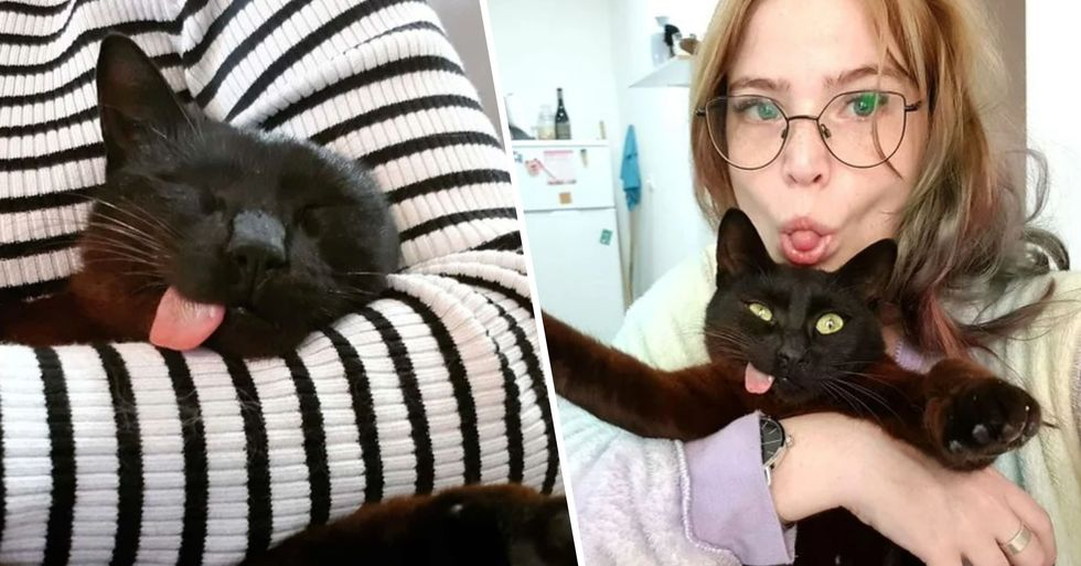 The Internet Has Fallen in Love With a Cat Whose Tongue Permanently Sticks Out