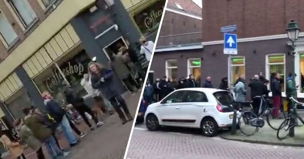 Long Lines Form Outside Amsterdam's Coffee Shops as Government Announces Closures