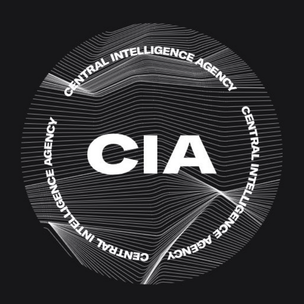 Ryder Ripps Responds to Claims That He Rebranded the CIA