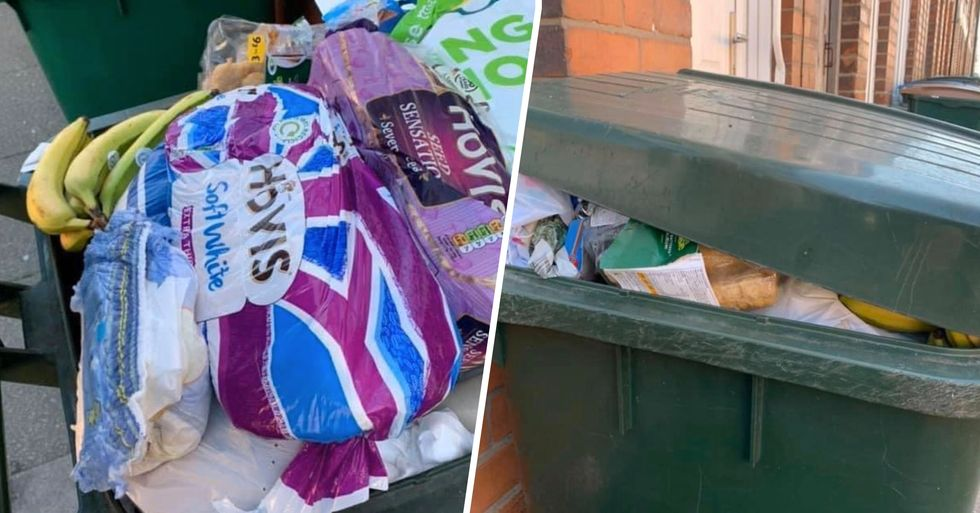 Man Shares Photos of Trash Cans Overflowing With Fresh Food After Panic Buying