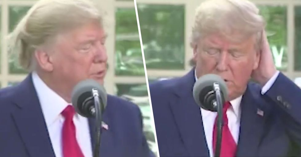 Donald Trump Assures America His Hair Is Real at Coronavirus Briefing