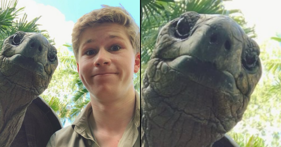 Steve Irwin's Son Robert Shares Adorable Photo With Tortoise From Self Isolation