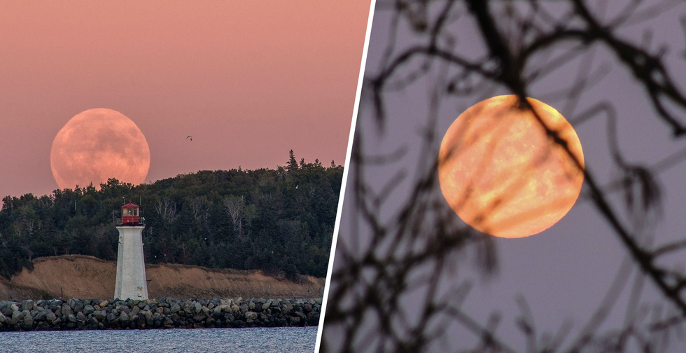 Stunning Pink Super Moon Will Illuminate the Sky Tonight