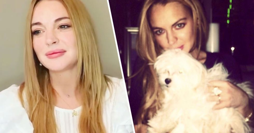 Lindsay Lohan Claims Her Dog Gucci Lived to See Rare Age of 27
