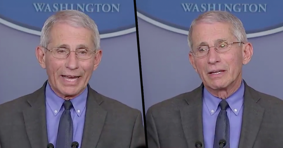 Dr. Fauci Heroically Criticizes Homophobia During White House Press Briefing