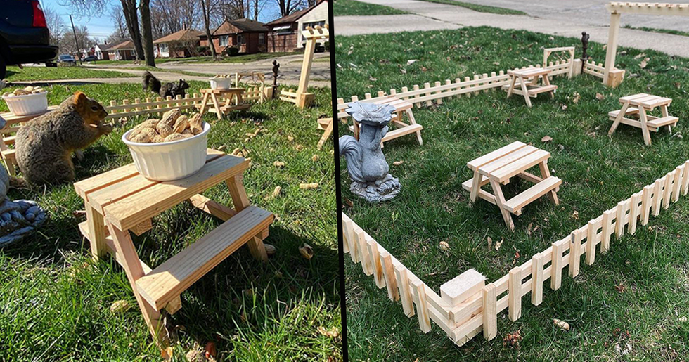 Man Builds Tiny Restaurant for Animals in His Yard During Lockdown