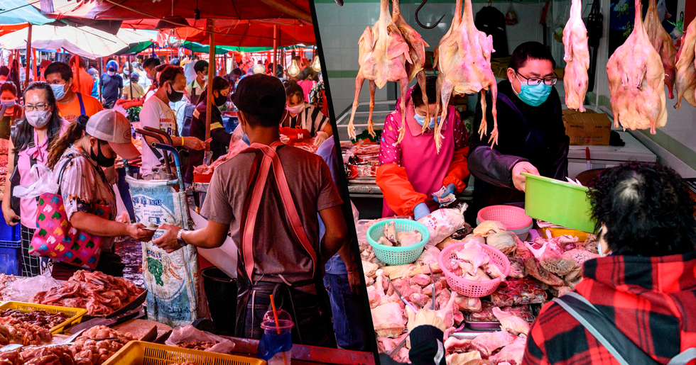 China's Biggest 'Wet Market' Reopens Amid Pandemic