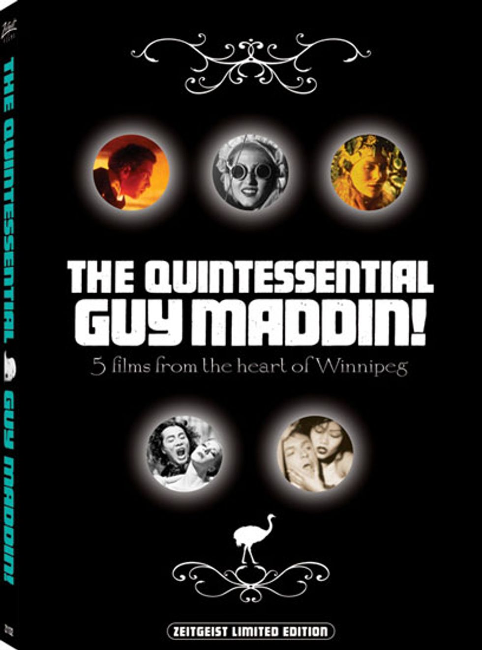The Quintessential Guy Maddin On DVD