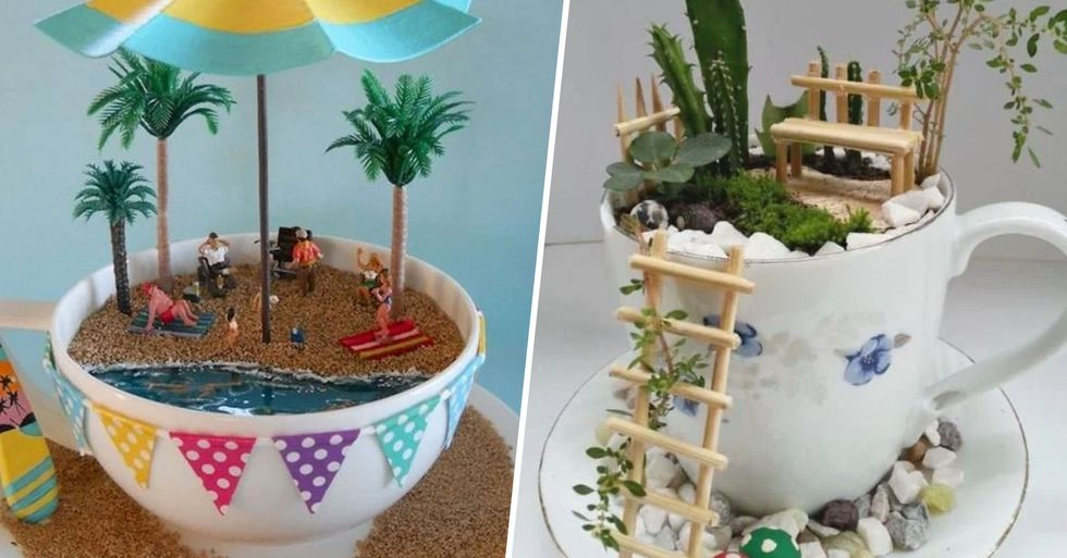 Tea Cup Gardens Are a Thing and They're Actually Really Adorable