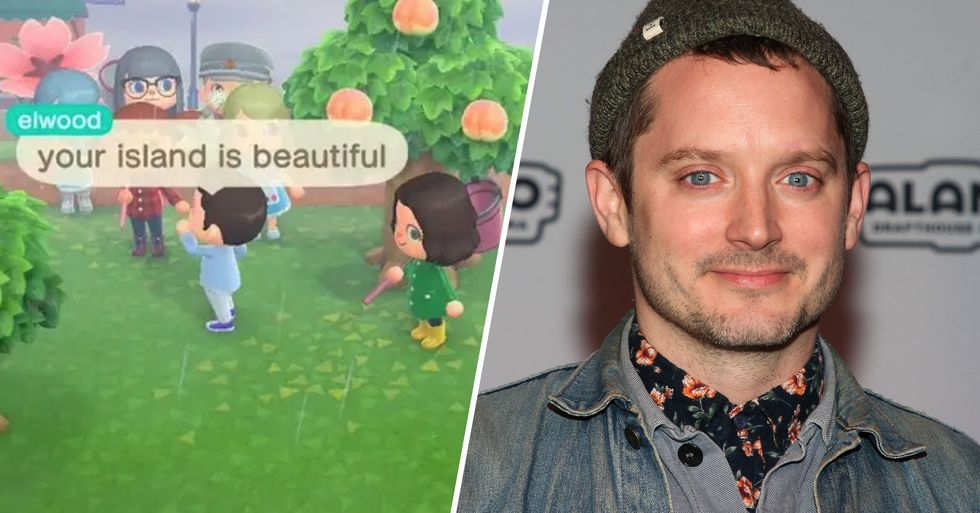 Elijah Woods Visited a Fan's 'Animal Crossing' Island to Sell Turnips and Was the Sweetest Guest