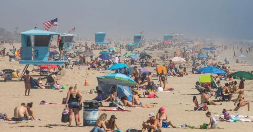 America's 'Quarantine Quitters' Have Given up on Lockdown and Are Heading out to Beaches