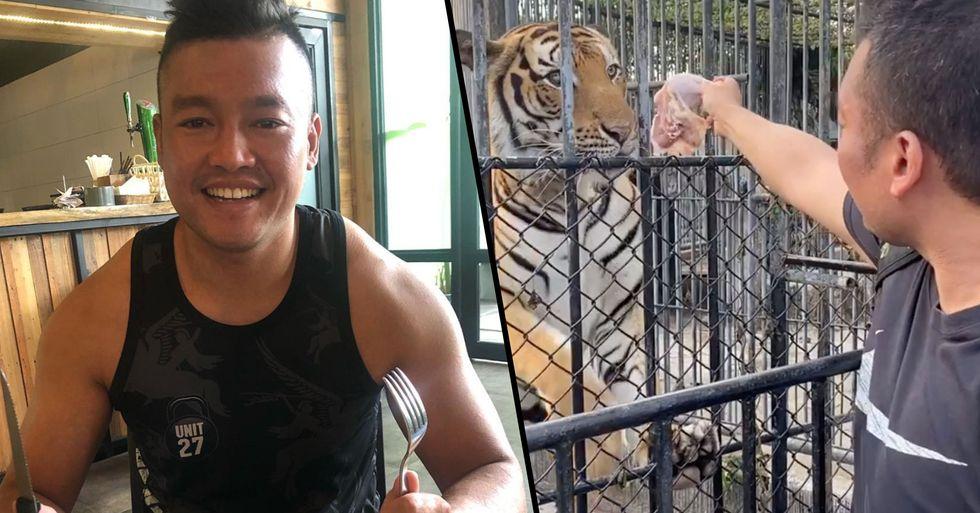 Man Arrested After Breaking Into Zoo to Feed 'Abandoned' Animals