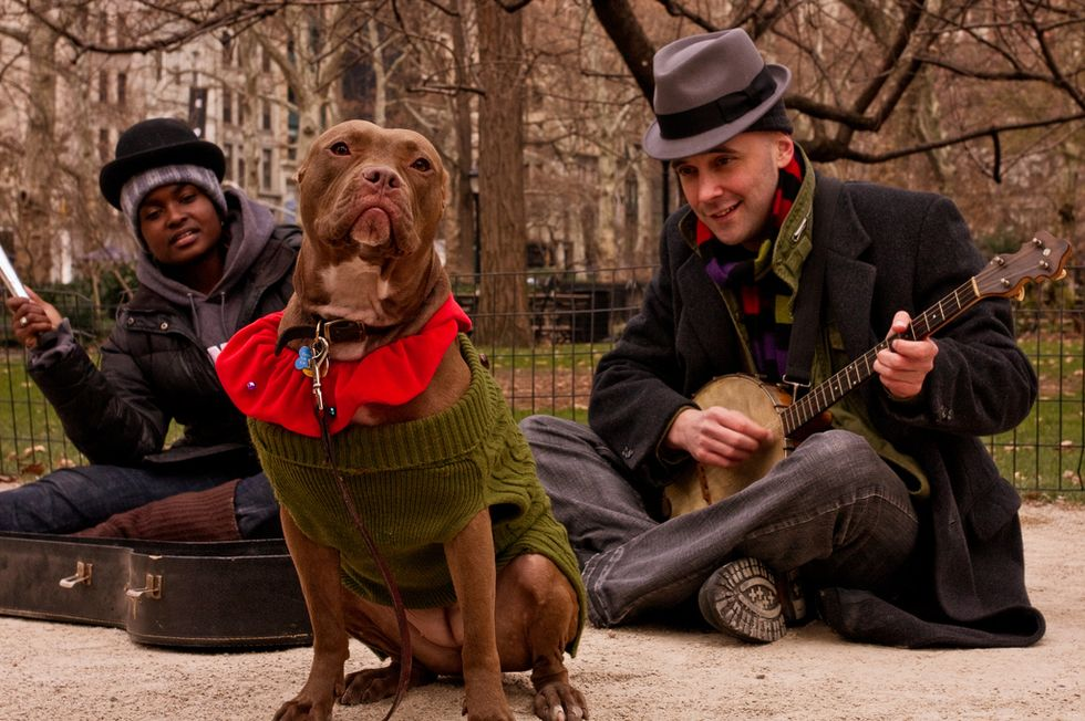 Stage Notes: Dog Act