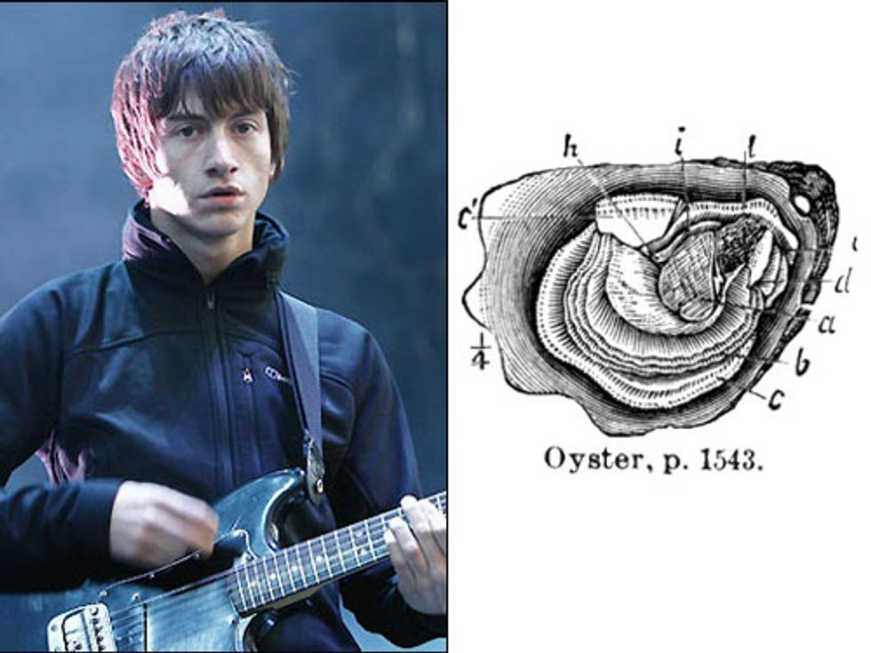 Alex Turner's Solo Project + Oysters Will Go Extinct in Today's Eight Items or Less