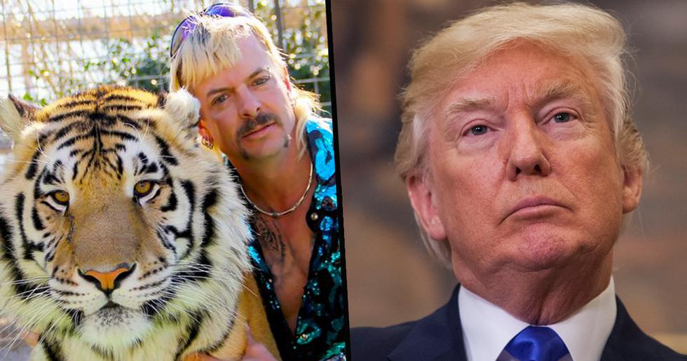 Joe Exotic Begs Donald Trump for Pardon in Most Imaginative Way