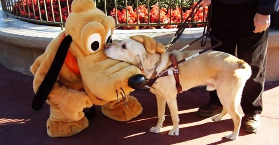 20 Images That Will Make You Really Really Happy