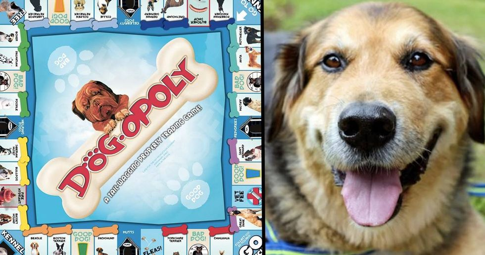 Dog Monopoly Lets You Buy Dogs Instead Of Property