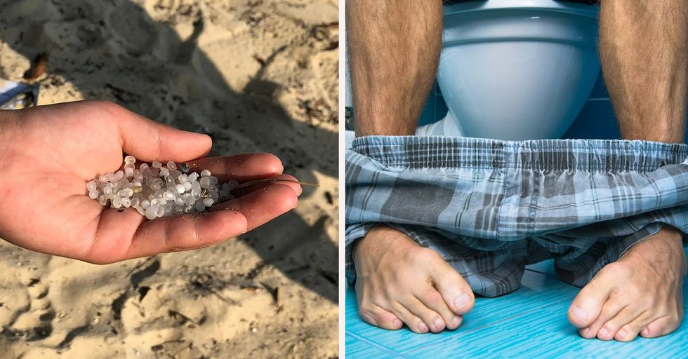 Microplastics Found in Human Poop for the First Time