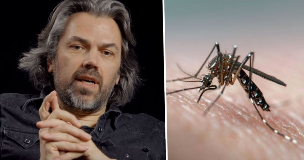 'Animal Rights Activist' Urges People to Let Mosquitoes Drink Their Blood